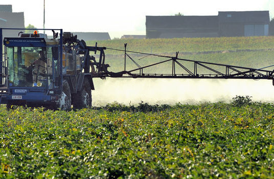 Suicides, agriculteurs en danger ?